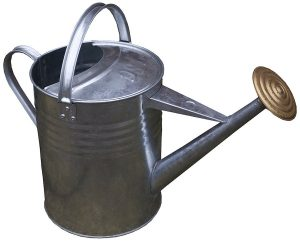 Apollo Gardening 9L Traditional Galvanised Metal Watering Can Review