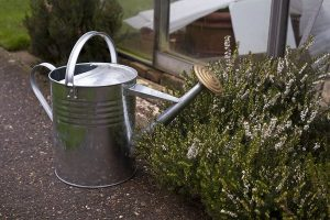 Apollo Gardening 9 Litres Traditional Watering Can Metal Can Review