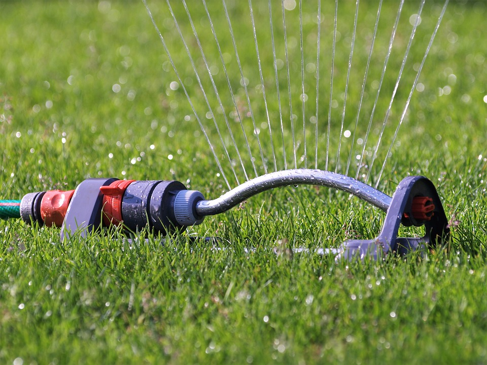 How often should I water my lawn?